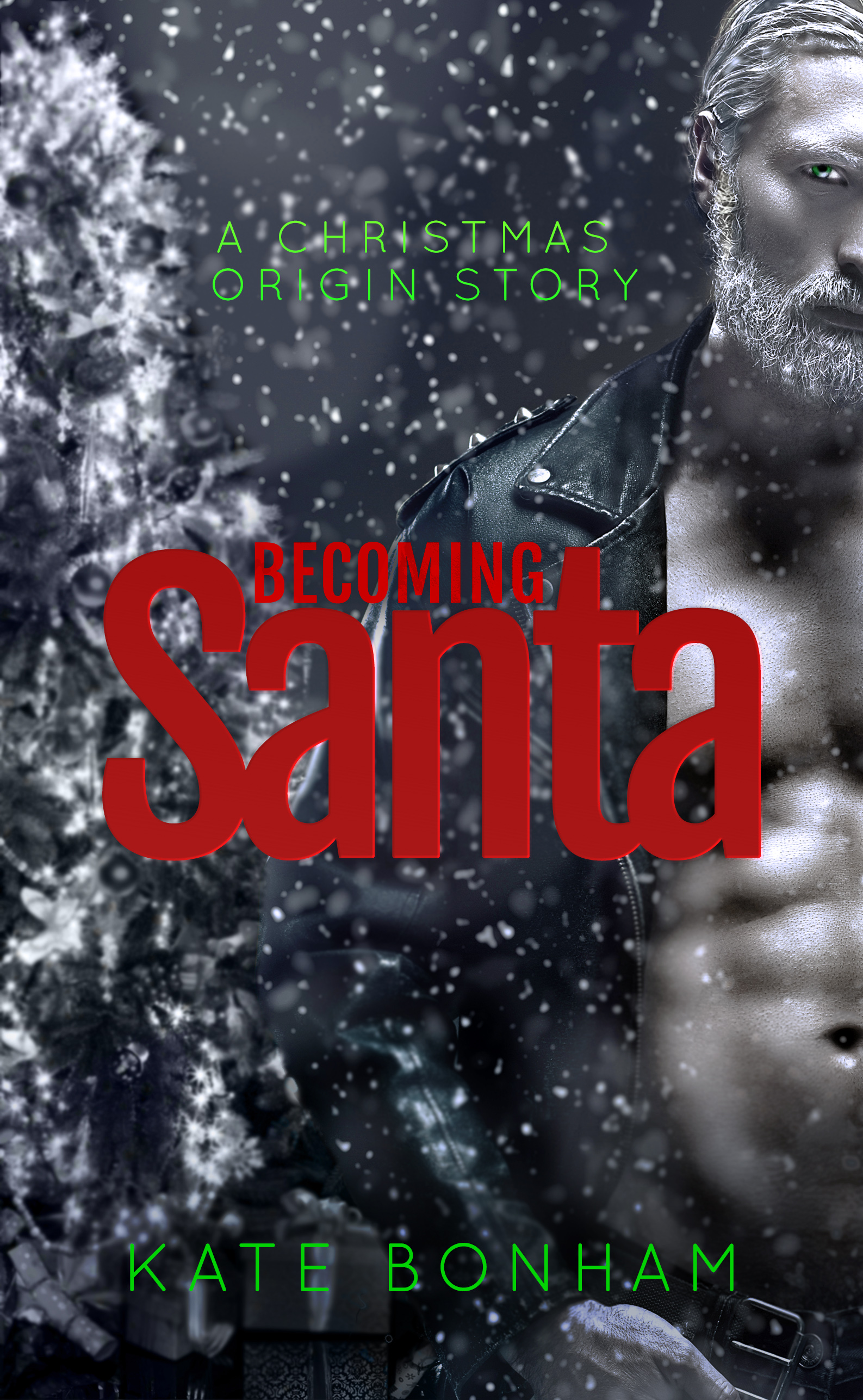 Becoming Santa eBook